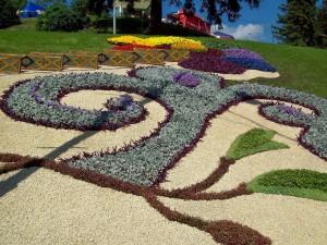 цветочная символика