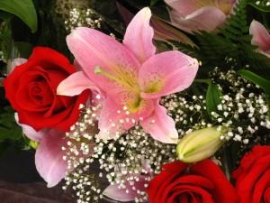 цветы к школьным праздникам