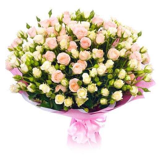 кустовые розы разноцветные