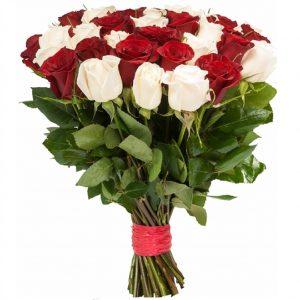 Букет 31 красно-белая роза