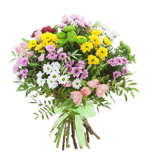 Какие цветы стоит подарить любимой бабушке