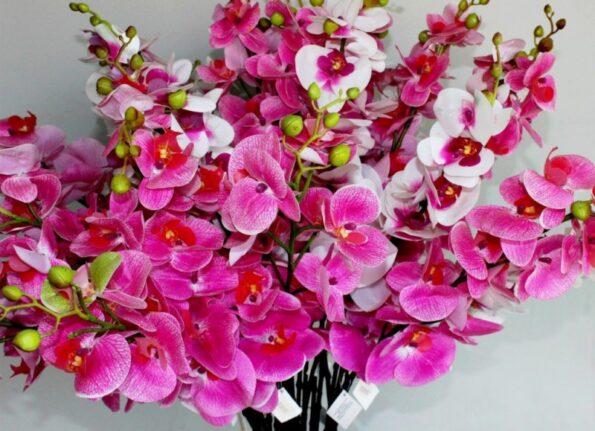 Букет орхидей: как правильно ухаживать за ним?