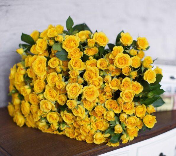 Желтые розы и их значение