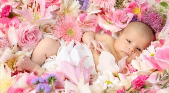 Цветы на рождение ребенка и не только – наш гид
