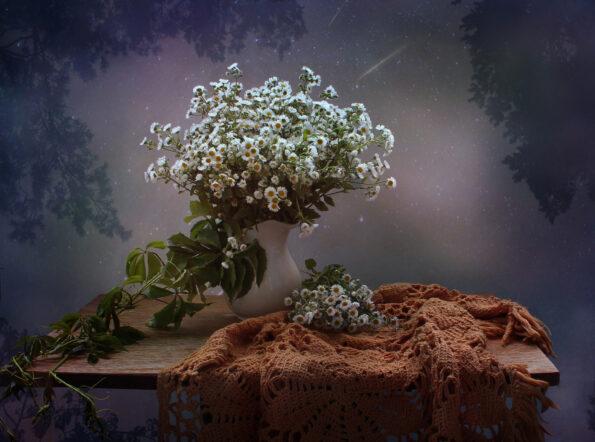 Восемь чудесных ночных цветов